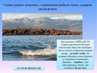 Охрана редких животных, ограничение рыбной ловли, создание заповедников. ОСТР