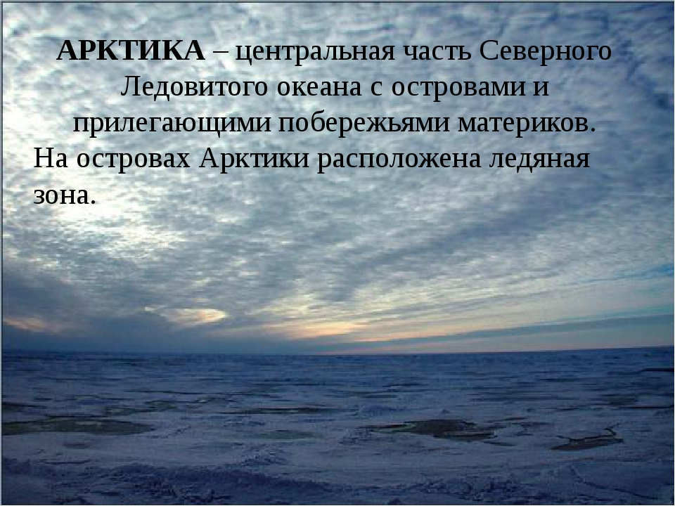 АРКТИКА – центральная часть Северного Ледовитого океана с островами и прилега...