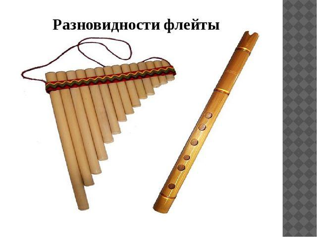 Разновидности флейты