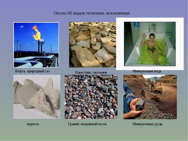 Около 60 видов полезных ископаемых Нефть, природный газ мергель Известняк. пе...