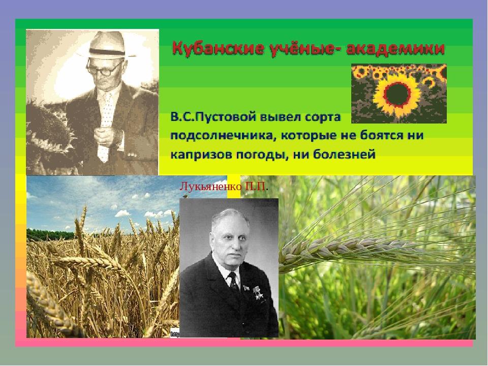 Лукьяненко П.П.