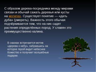 С образом дерева-посредника между мирами связан и обычай сажать деревья или к