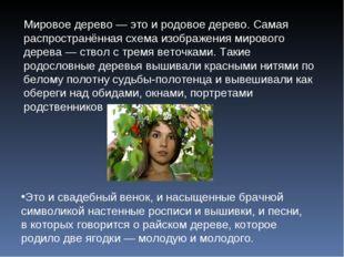 Мировое дерево — это и родовое дерево. Самая распространённая схема изображен