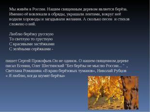 Мы живём в России. Нашим священным деревом является берёза. Именно её вовлека