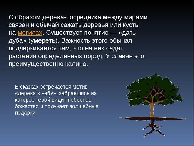 С образом дерева-посредника между мирами связан и обычай сажать деревья или к...