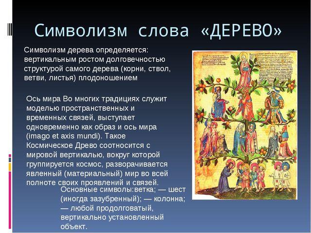 Символизм слова «ДЕРЕВО» Символизм дерева определяется: вертикальным ростом д...