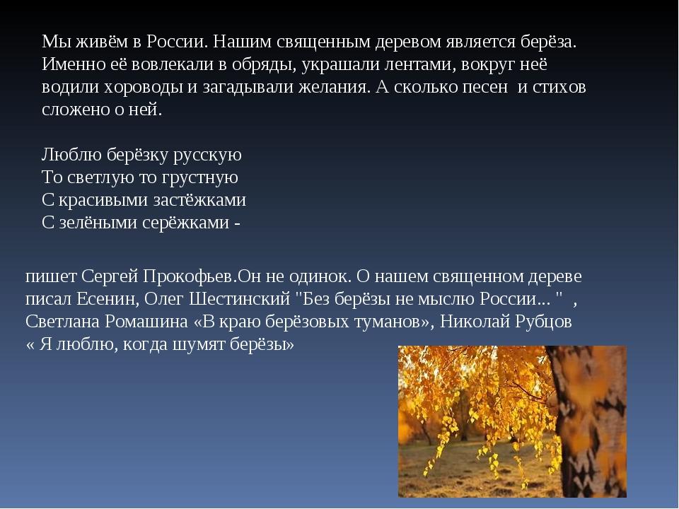 Мы живём в России. Нашим священным деревом является берёза. Именно её вовлека...