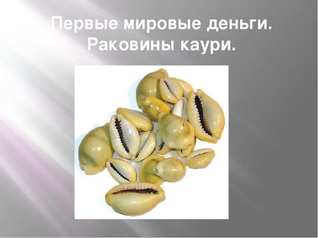 Первые мировые деньги. Раковины каури.