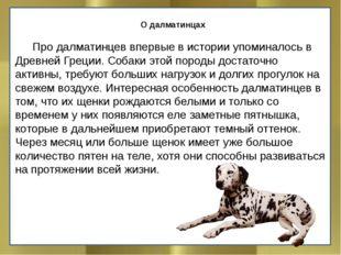 О далматинцах Про далматинцев впервые в истории упоминалось в Древней Греци