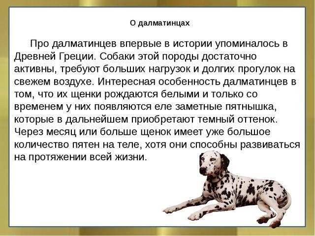 О далматинцах Про далматинцев впервые в истории упоминалось в Древней Греци...