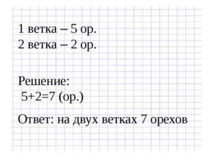 1 ветка – 5 ор. 2 ветка – 2 ор. Решение: 5+2=7 (ор.) Ответ: на двух ветках 7