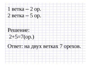 1 ветка – 2 ор. 2 ветка – 5 ор. Решение: 2+5=7(ор.) Ответ: на двух ветках 7 о