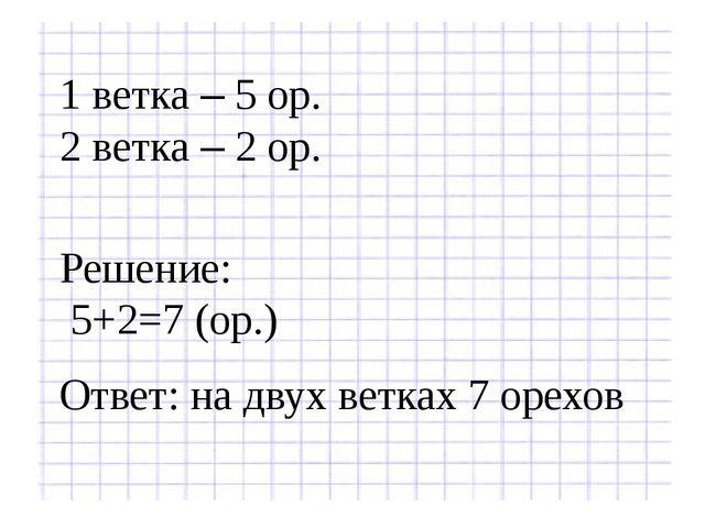 1 ветка – 5 ор. 2 ветка – 2 ор. Решение: 5+2=7 (ор.) Ответ: на двух ветках 7...