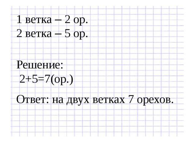 1 ветка – 2 ор. 2 ветка – 5 ор. Решение: 2+5=7(ор.) Ответ: на двух ветках 7 о...