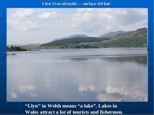 """Llyn Trawsfynydd — surface 4.8 km² """"Llyn"""" in Welsh means """"a lake"""". Lakes in W"""