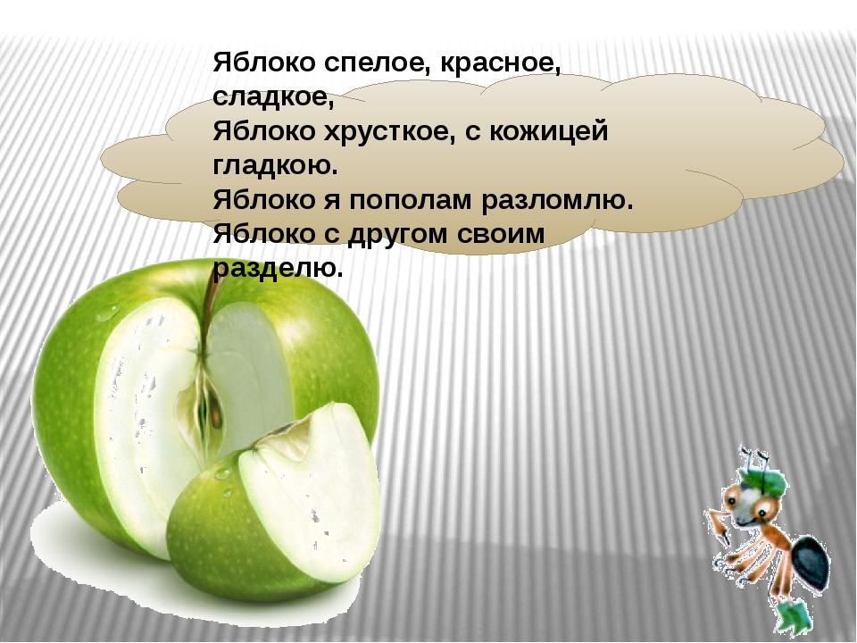 Яблоко спелое, красное, сладкое, Яблоко хрусткое, скожицей гладкою. Яблоко...