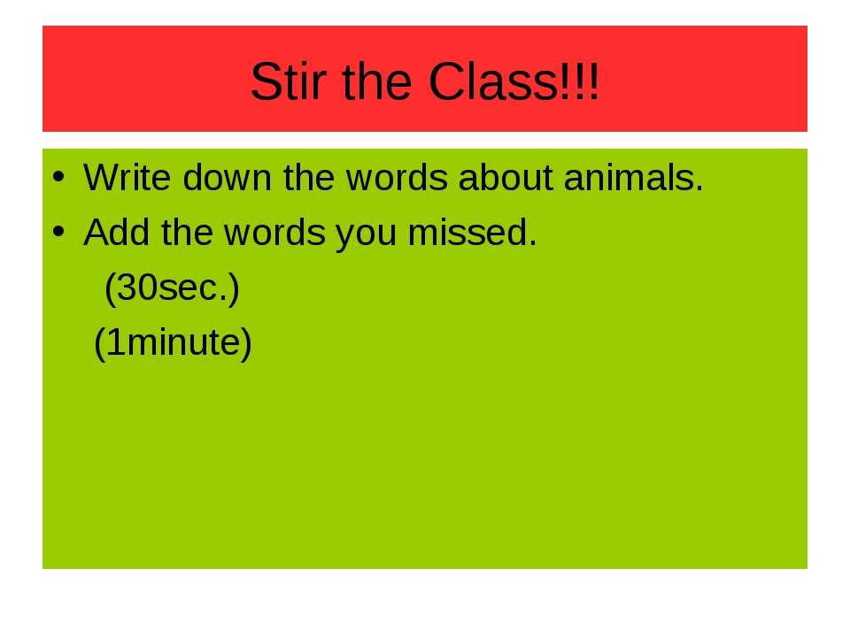 Stir the Class!!! Write down the words about animals. Add the words you misse...