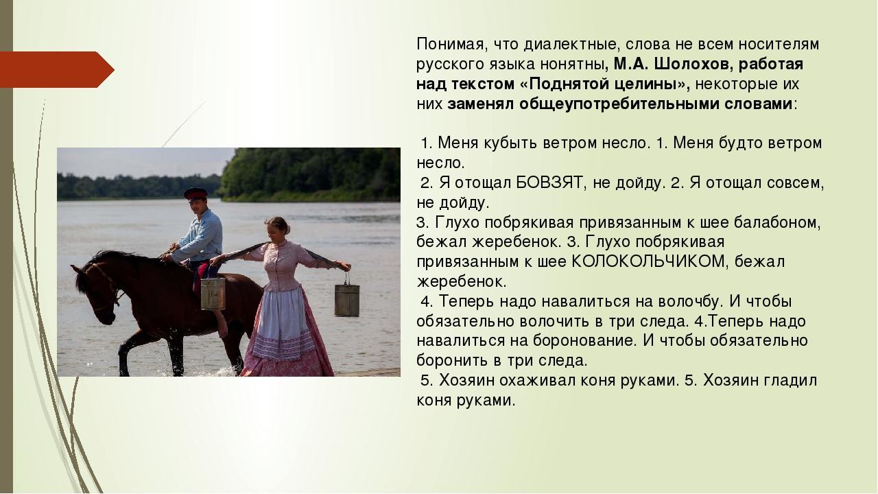 Понимая, что диалектные, слова не всем носителям русского языка нонятны, М.А....