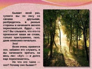 Бывает иной раз, гуляете вы по лесу со своими друзьями, разбредетесь в разны