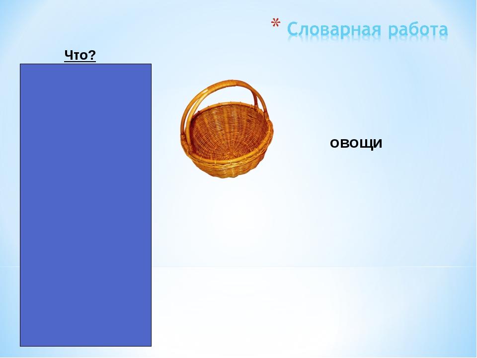 картошка репа капуста лук морковь Что? овощи