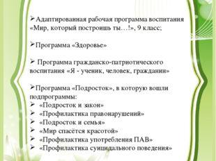 Адаптированная рабочая программа воспитания «Мир, который построишь ты…!», 9