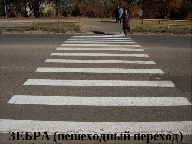 ЗЕБРА (пешеходный переход)