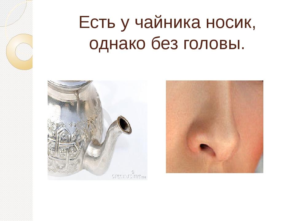 Есть у чайника носик, однако без головы.