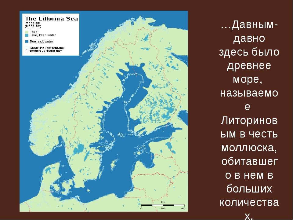 …Давным-давно здесь было древнее море, называемое Литориновым в честь моллюск...