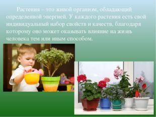 Растения – это живой организм, обладающий определенной энергией. У каж