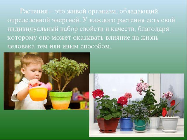 Растения – это живой организм, обладающий определенной энергией. У каж...