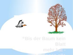 Bis der Baum kein Blatt mehr hat - weggeflogen alle