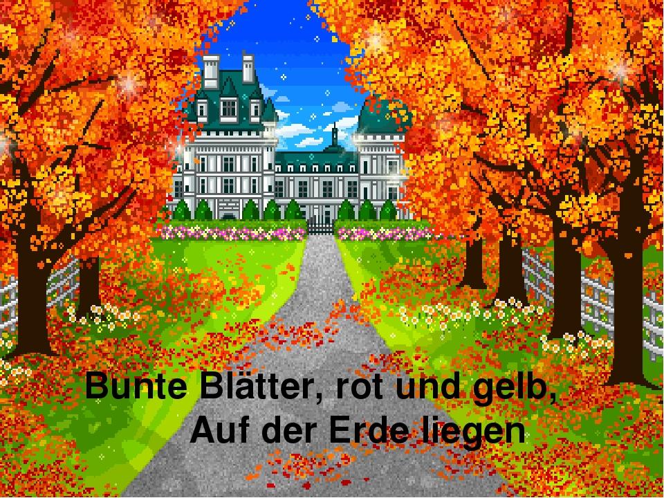 Bunte Blätter, rot und gelb, Auf der Erde liegen