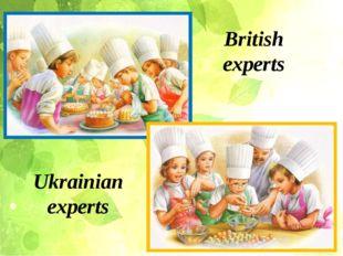 British experts Ukrainian experts