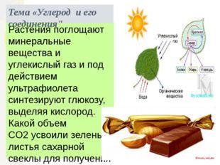 Растения поглощают минеральные вещества и углекислый газ и под действием ульт