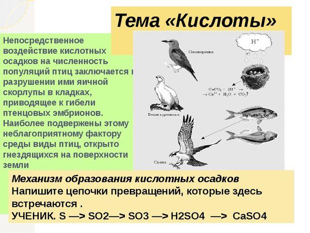 Непосредственное воздействие кислотных осадков на численность популяций птиц...