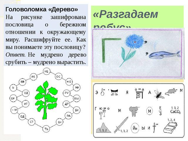 «Разгадаем ребус». Головоломка «Дерево» На рисунке зашифрована пословица о бе...
