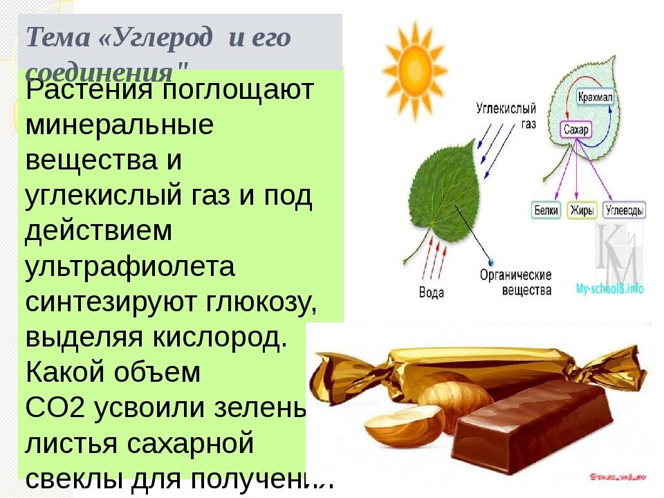Растения поглощают минеральные вещества и углекислый газ и под действием ульт...