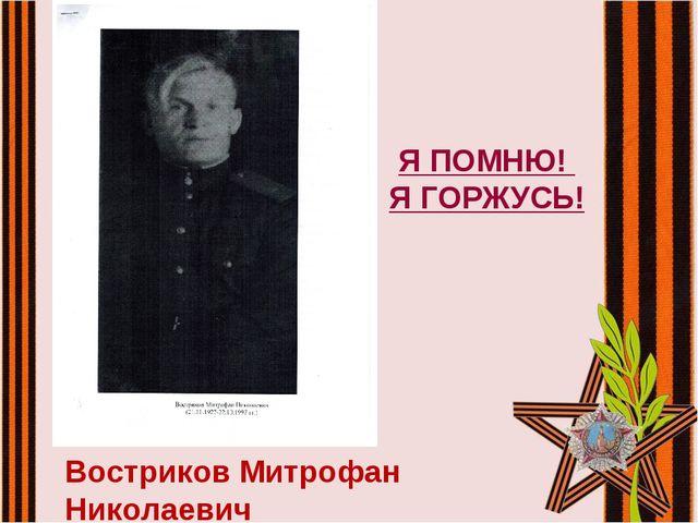 Востриков Митрофан Николаевич Я ПОМНЮ! Я ГОРЖУСЬ!