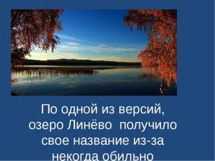 По одной из версий, озеро Линёвополучило свое название из-за некогда обильн