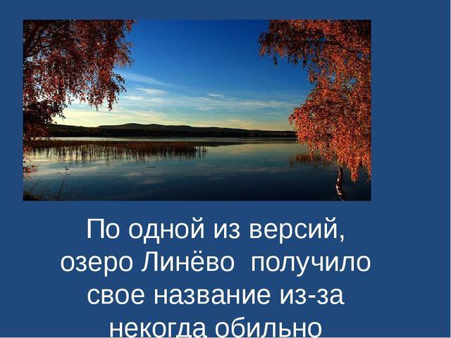 По одной из версий, озеро Линёвополучило свое название из-за некогда обильн...