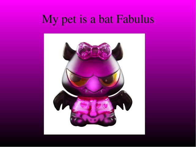 My pet is a bat Fabulus