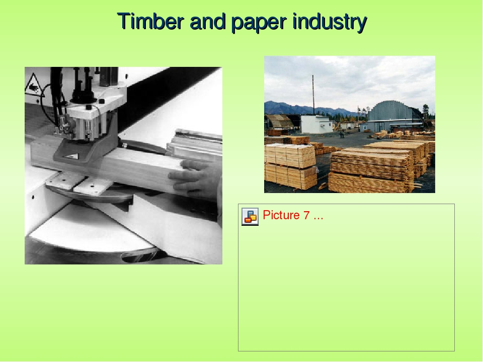 Timber and paper industry
