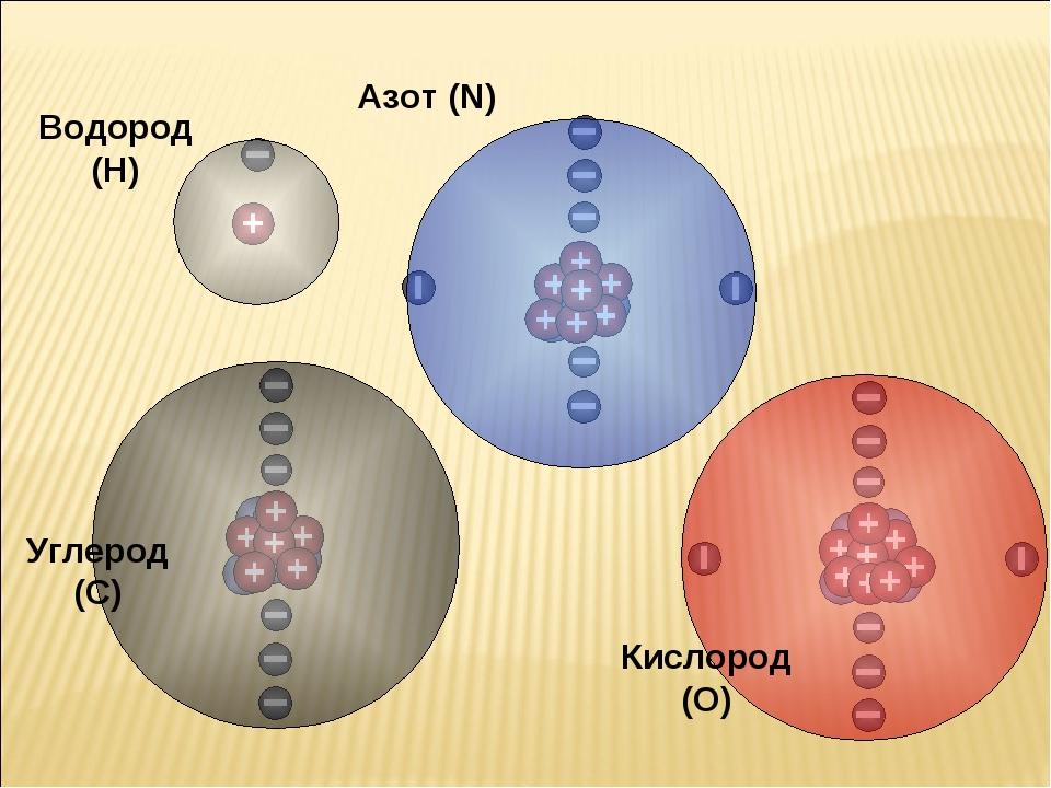 Водород (H) Азот (N) Кислород (O) Углерод (C)