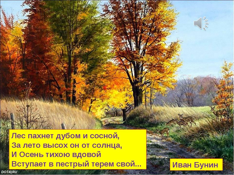 Лес пахнет дубом и сосной, За лето высох он от солнца, И Осень тихою вдовой В...