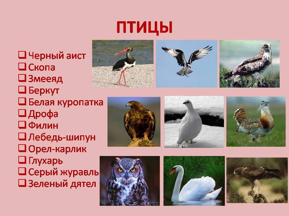 hello_html_48265f65.jpg
