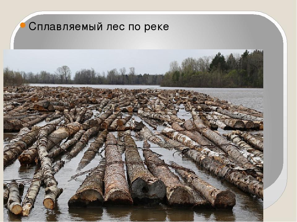 Сплавляемый лес по реке