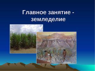 Главное занятие - земледелие