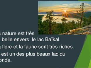 La nature est très belle envers le lac Baïkal. La flore et la faune sont très