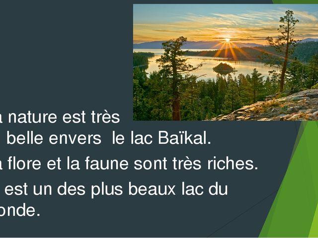 La nature est très belle envers le lac Baïkal. La flore et la faune sont très...