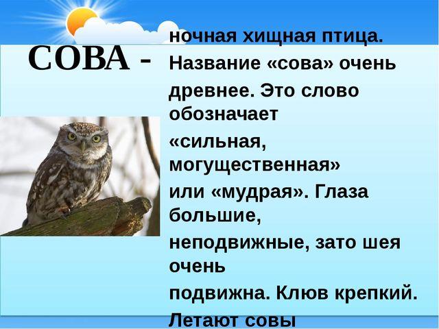 СОВА - ночная хищная птица. Название «сова» очень древнее. Это слово обознача...